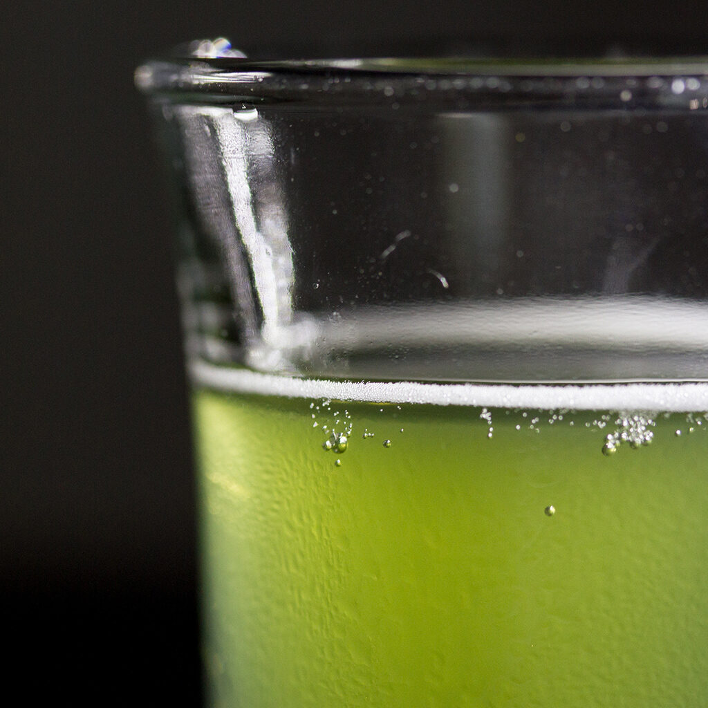 Kombucha à la chlorophylle